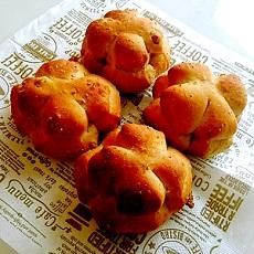 東文化会館 文化講座 パンレッスン 土曜日クラス くるみパン